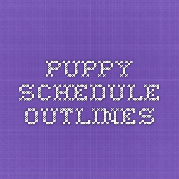 Puppy Schedule Outlines                                                                                                                                                      More