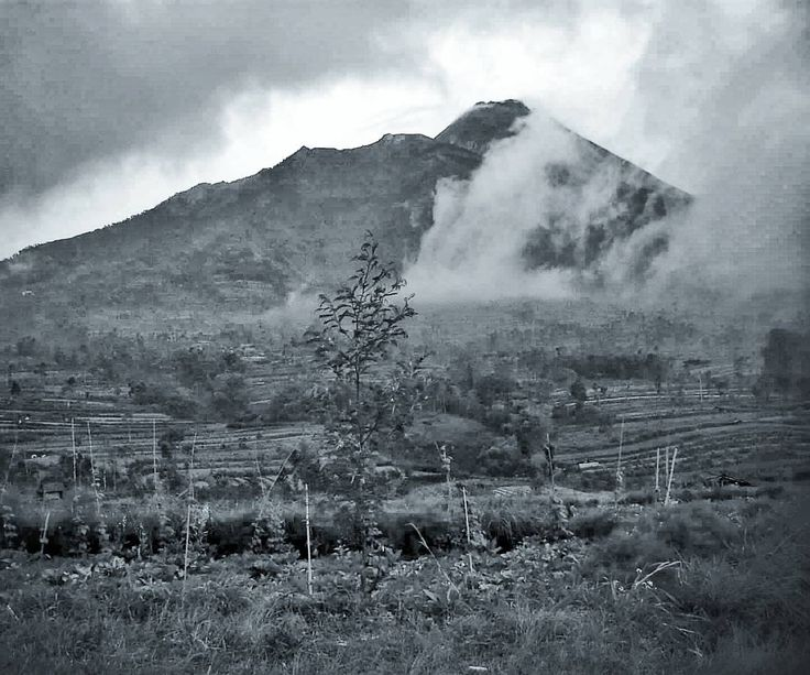 Every mountain and every trip has its own story. You will find another story even though you are traveling on the same mountain. . . Photograph was taken from Cangkringan the side of Mount Merapi. It's about 20 Km from Yogyakarta and just only 3-4 Km from the peak. . . . .  #landscape #mountains #fog #mist #volcano #tree #travel #instatravel #instago #nature #outdoors #calamity #sky #eruption #steam #weather #wood #winter #storm #water #beautiful #photography #bw #photogram #photoshoot…