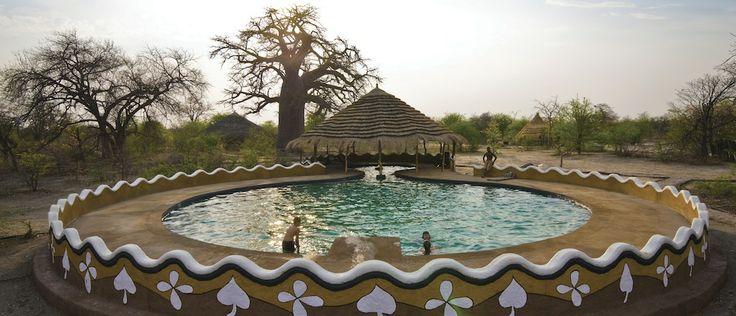 Swimming in the Kalahari