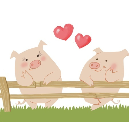 Pig Love <3