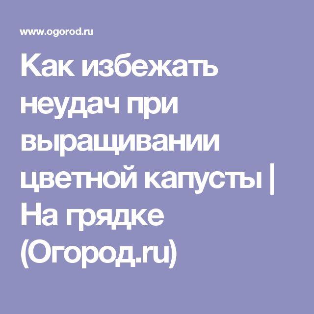 Как избежать неудач при выращивании цветной капусты | На грядке (Огород.ru)