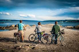 Bildergebnis für viking biking oslo