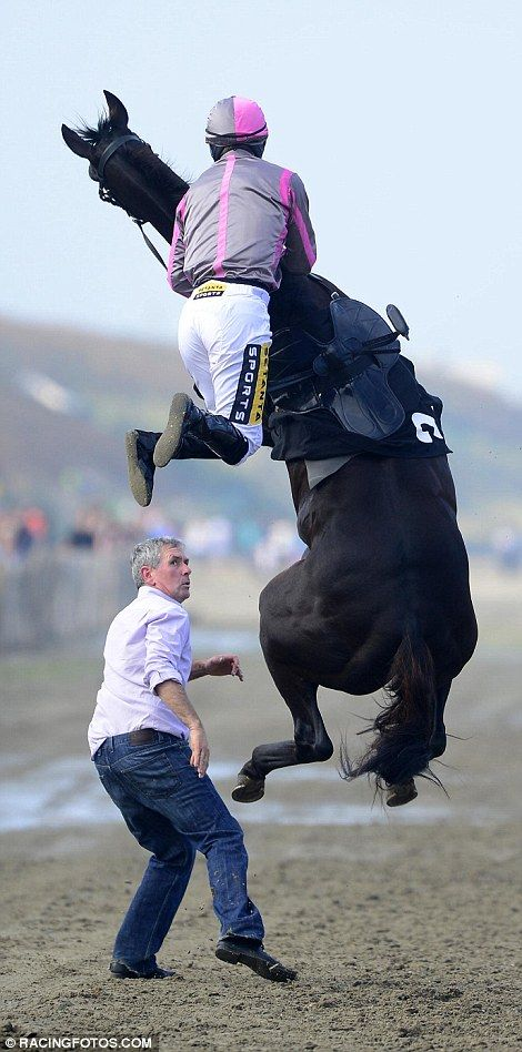 http://www.dailymail.co.uk/news/article-2744139/It-s-not-jump-race-Terrifying-moment-horse-rears-jockey-tries-mount-Britain-s-beach-meet.html