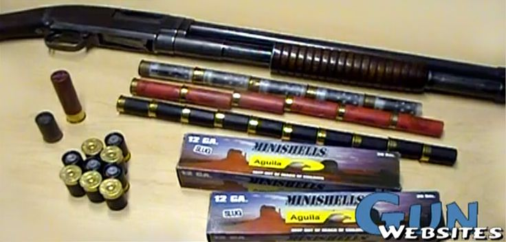 "Aguila 12 gauge 1"" Minishells. If your rifle holds six 12 gauge rounds, with the Aguila 12 gauge 1"" Minishells will take ten. Ten rounds loeaded in the magazine can make the difference. Muzzle Velocity: 1200 fps, buckshot or slug."