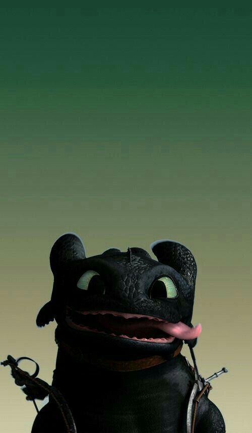 Pin by salomeee on T v | How to Train Your Dragon, How to train dragon, Toothless dragon