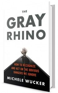 THE GRAY RHINO: How to Recognize and Act on the Obvious Dangers We Ignore By Michele Wucker. I call it sustainable, conscious effective leadership.