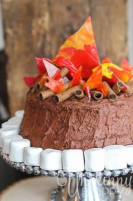 Cute campfire birthday cake, perfect for a western, cowboy or Lone Ranger themed party!