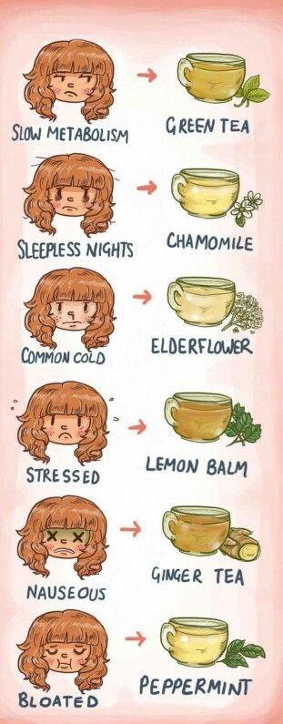 Tea types                                                                                                                                                     More