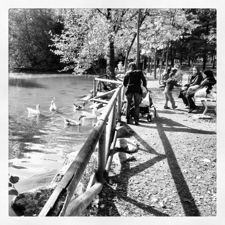 Legnano, al parco