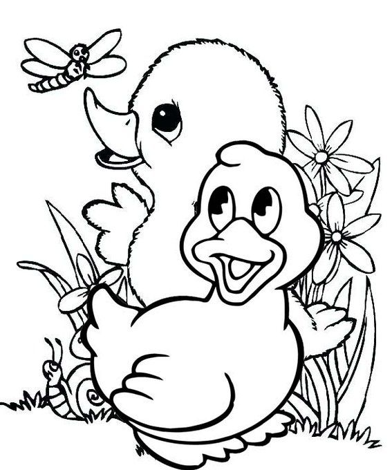 Cute And Fun Baby Duck Coloring Pages Bird Drawings Animal Coloring Pages Bird Embroidery Pattern