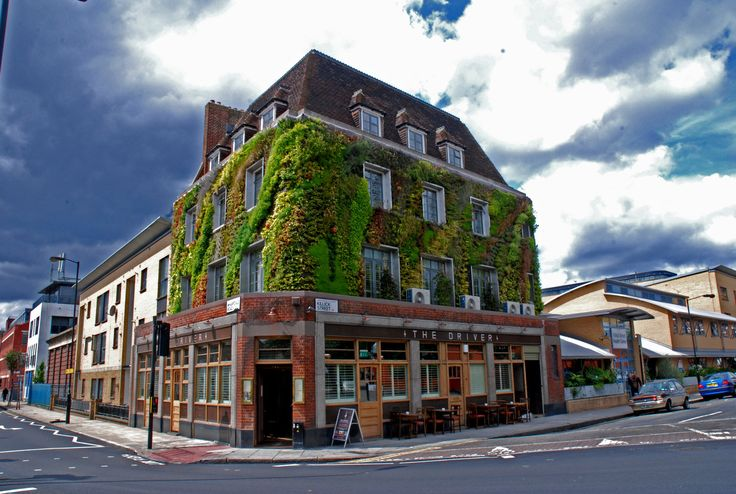 Pacha, The Driver, London | Vertical Garden Patrick Blanc