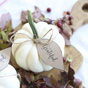 http://www.ellaclaireinspired.com/pumpkin-leaves-free-printable/