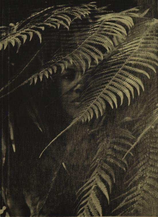 Zohra Opoku, 'Dicksonia Antarctica' (2015), Screen-print on fabric, 105 x 79cm, Edition of 2