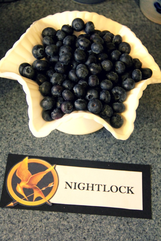 """Blueberries as """"Nightlock berries"""": Catch Fire, Hunger Games Parties, Birthday Parties, Theme Parties, Locks, Parties Ideas, Blueberries, Inspiration Quotes, Games Food"""
