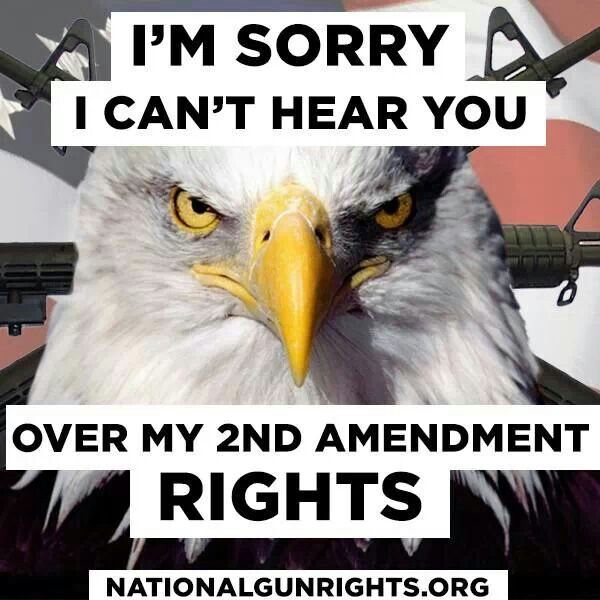 The 2nd amendment. Seriously, will criminals obey this gun rights law? No. Outlaws do not obey the law. Therefore, criminals are the only ones who own guns. That is more danger.