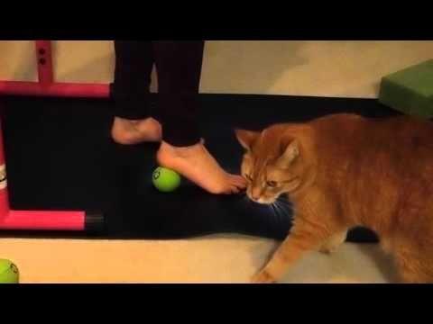 19++ Yoga tune up balls feet inspirations