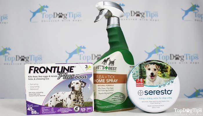 Flea & Tick Medicine for Dogs