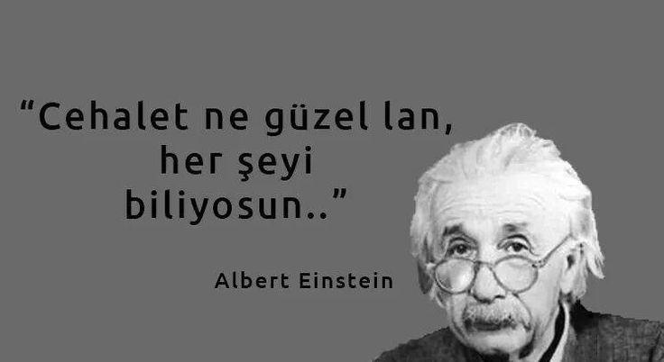 Cehalet ne güzel lan, her şeyi biliyosun...   - Albert Einstein