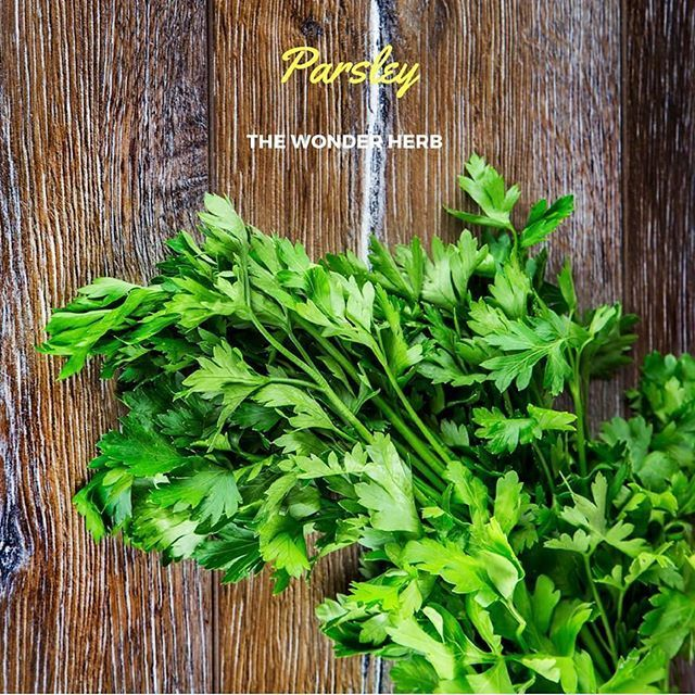 The health benefits of parsley include controlling cancer, diabetes, and rheumatoid arthritis, along with helping prevent osteoporosis. Furthermore, it acts as a pain reliever with anti-inflammatory properties. It also provides relief from gastrointestinal issues such as indigestion, stomach cramps, bloating, and nausea, while helping to strengthen the immune system.  #USimplySeason #spices #Parsley  Source: Organic Facts…