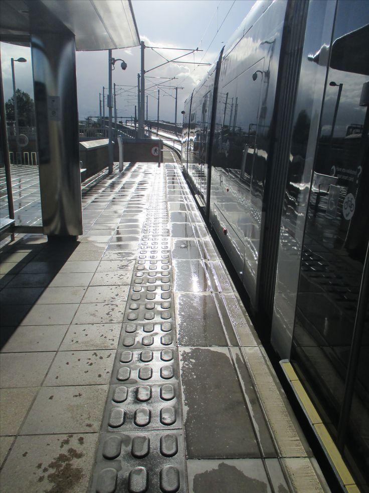 Sunshine on the trams.  Wendy Lorimer.