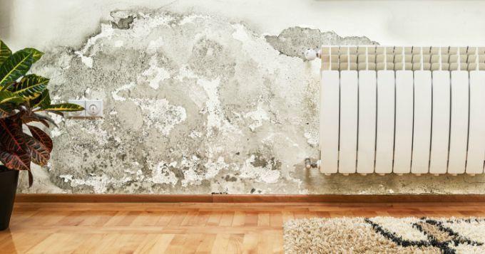 10 astuces pour lutter contre les moisissures dans votre maison | CuisineAZ Promos