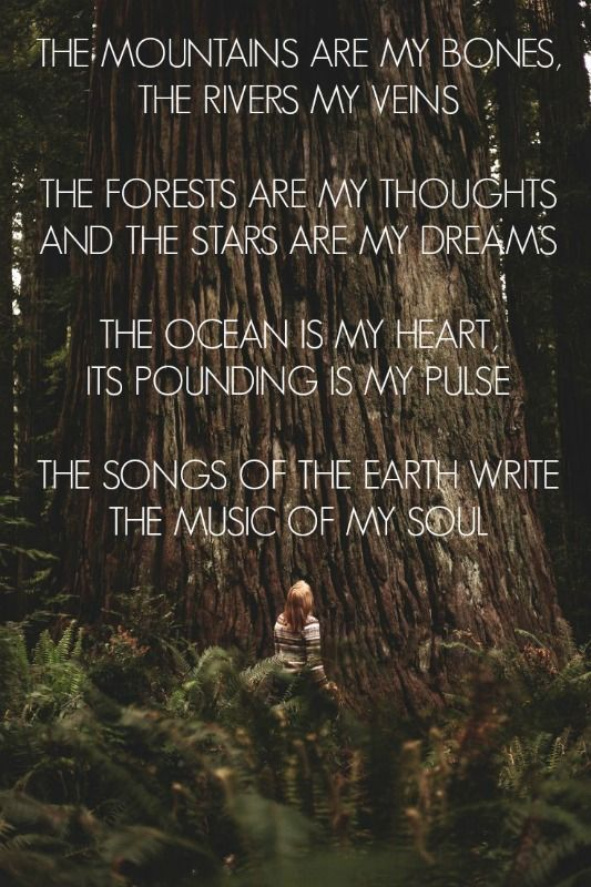 The mountains are my bones, the rivers my veins, the forests are my thoughts and the stars are my dreams. The ocean is my heart its pounding is my pulse. The songs of the earth write the music of my soul.