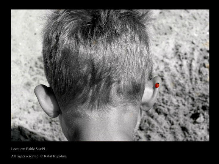 My son John and his little friend ;) - he didn't even realize that he has something on his ear - I just love that pic.