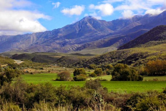 Road Tripping on the Garden Route in South Africa