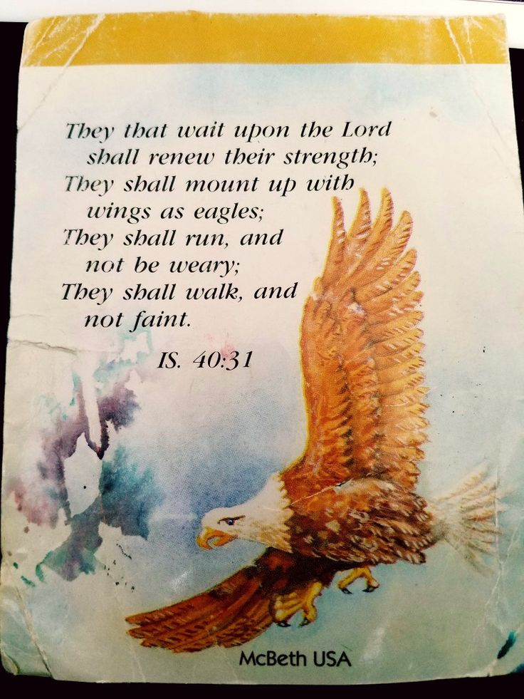 They will wait upon the lord
