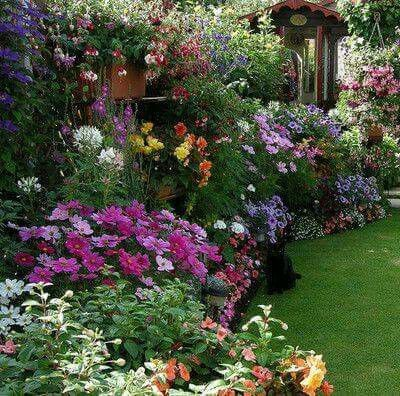 Gorgeous old English cottage style flower garden.