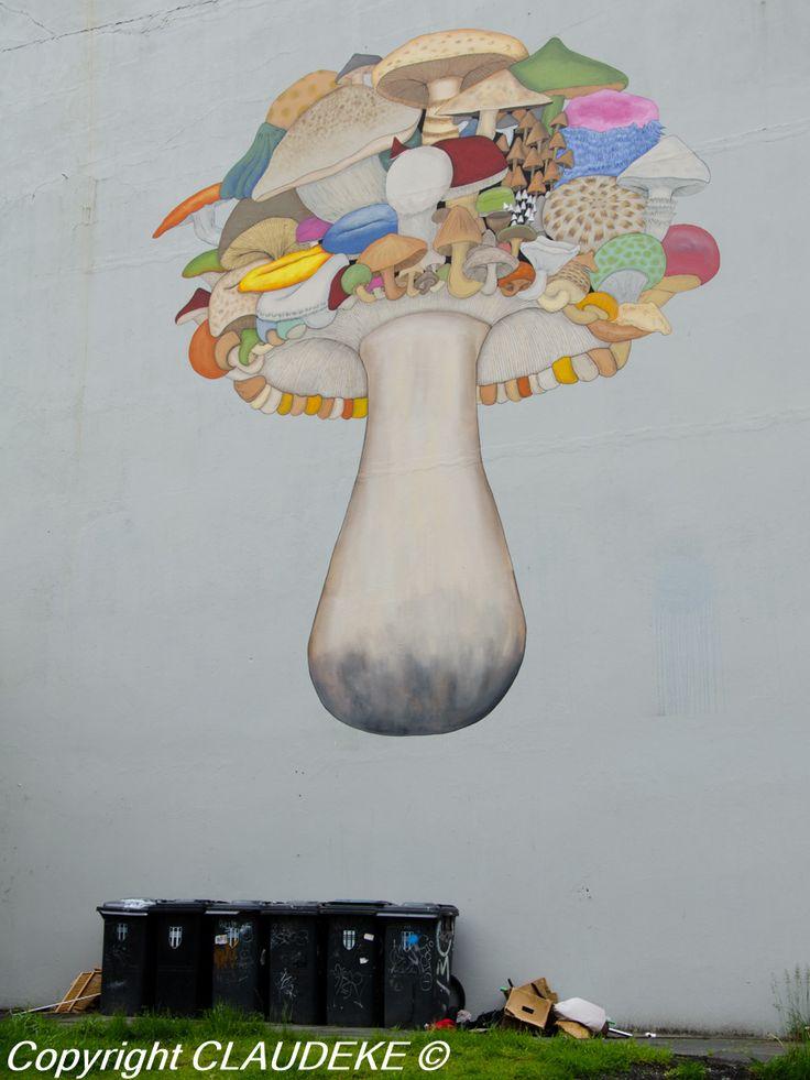 Reykjavik street art http://www.claudeke.com
