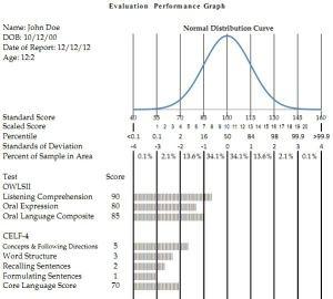 evaluation of websites essay