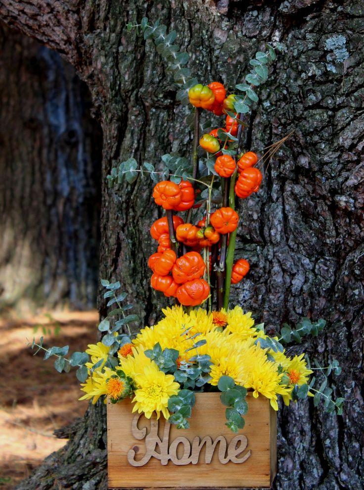Pumking trees, crisantemos y hojas de eucalipto en caja de madera.