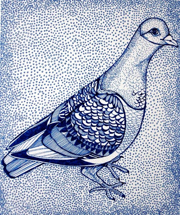 ARTFINDER: The Patterned Pigeon by Helen Wells - A beautiful fine art, limited edition print of a quirky and perky patterned pigeon.The print is the highest quality Giclée print of a hand drawn image. Using...