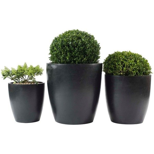 PR Home Cone Planter Set Of 3 ❤ liked on Polyvore featuring home, home decor, floral decor, plants, fillers, flowers, black, backgrounds, flower arrangement and flower stem