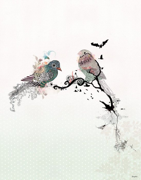 160 best Bird Artwork images on Pinterest