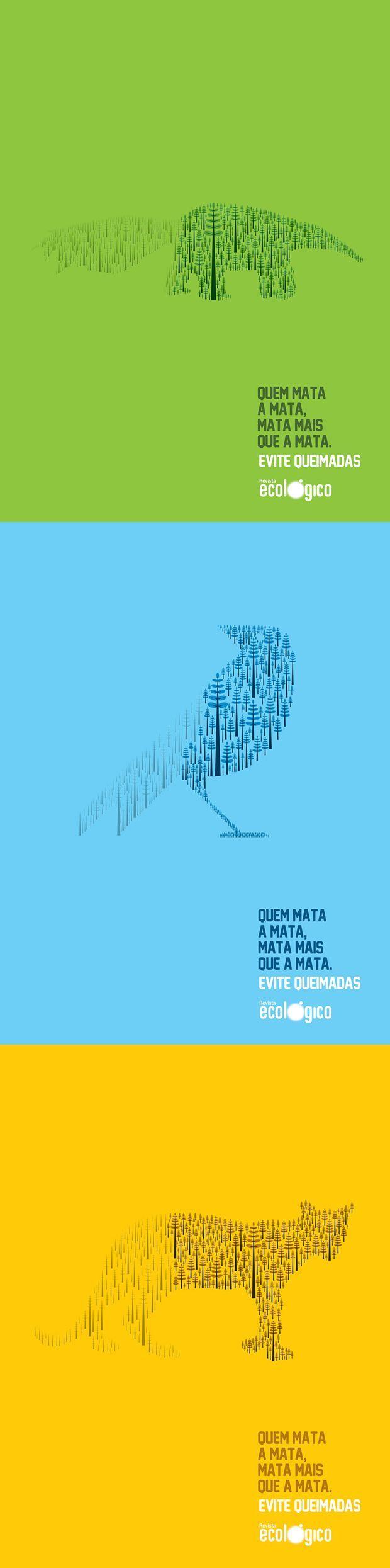 """""""Quem mata a mata ... mata mais que a mata"""" against deforestation in Brazil"""