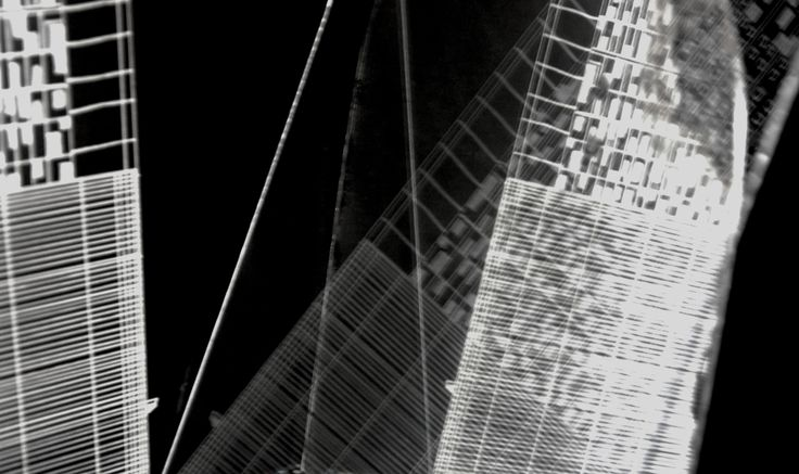 Rayogramme