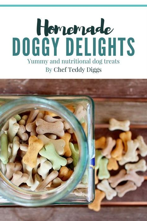 DELICIOUS & NUTRITIOUS! Check out these Homemade Dog Treats!