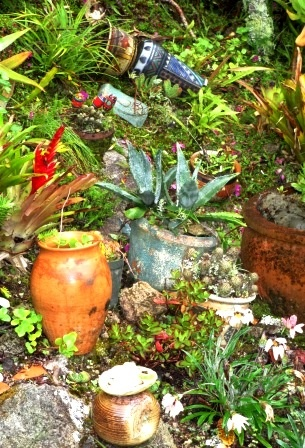pots and things in the mexican garden full of succulents and the random cactus