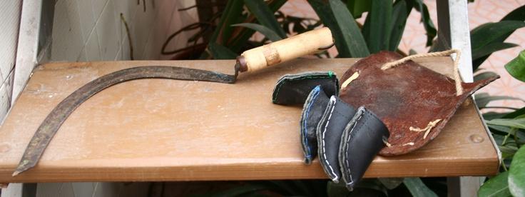 012.  Instrumentos para coger y trabajar el esparto. El Campillo de Adentro (Perín). Informante: J.D.M.