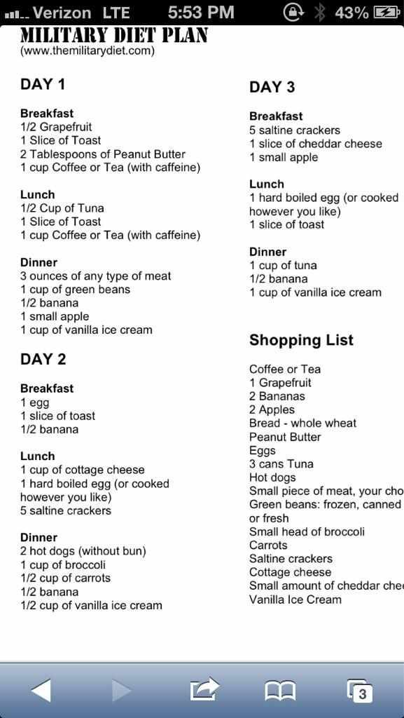http://www.how-to-lose-weight-in-a-week.net/diets-that ...