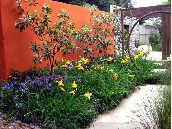 A blast of colour, provided by low maintenance,hardy perennials,