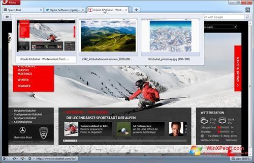 Скриншот программы Opera для Windows XP