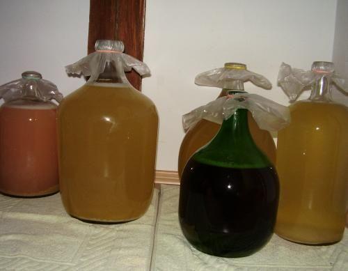 HAJANY - Recepty - Domácí víno - recepty