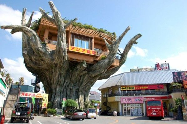 Banyan Treehouse Restaurant. Located in the Banyan Town shopping center in Okinawa, Japan.