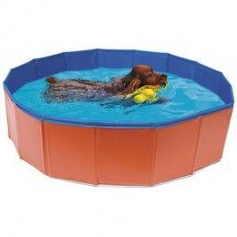 PISCINA PARA PERROS - Disponible en dos tamaños (80x20cm y 120x30cm) fabricada por NAYECO. Compra online en www.zazbuy.com. ENVIAMOS GRATIS sin aduanas a domicilio a Las Palmas de Gran Canaria, Tenerife, Fuerteventura, Lanzarote. #perros #dogs #hunde #mascotas #pets #piscina para perros