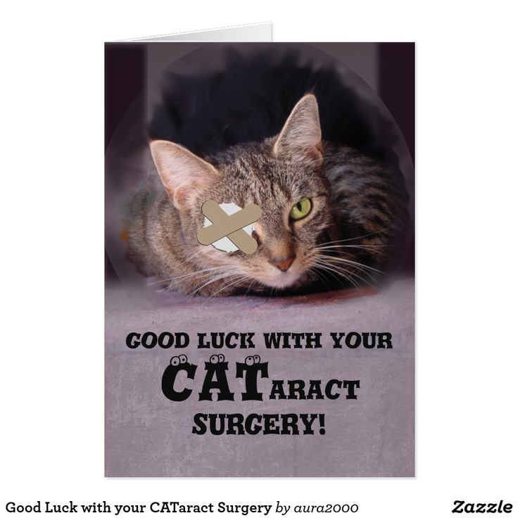 Good Luck On Your Surgery Quotes: Good Luck With Your CATaract Surgery Card