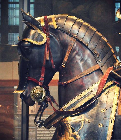 78 best ideas about Horse Armor on Pinterest | Medieval horse, War horses  and Horses