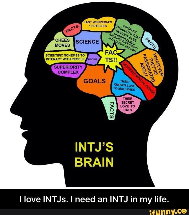 I love INTJs. I need an INTJ in my life.